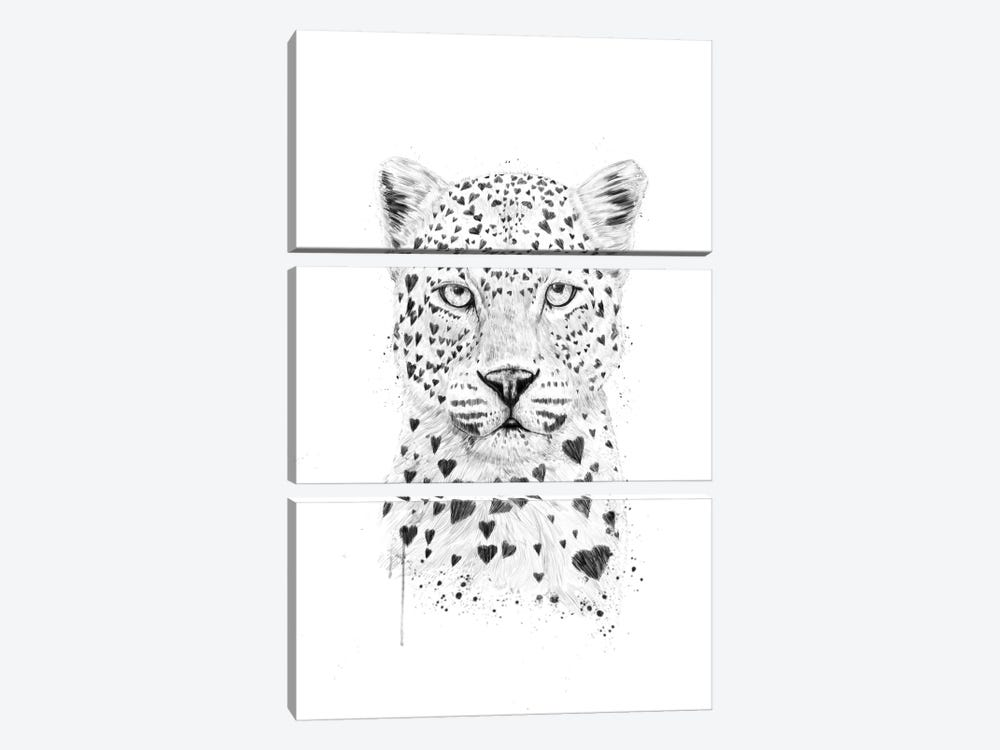 Lovely Leopard by Balazs Solti 3-piece Canvas Art Print