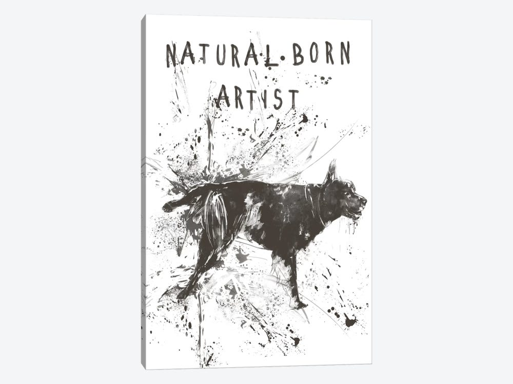Natural Born Artist by Balazs Solti 1-piece Canvas Wall Art