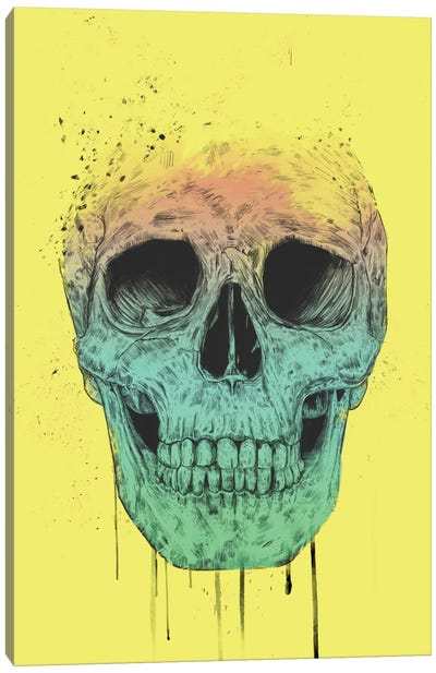 Pop Art Skull Canvas Art Print