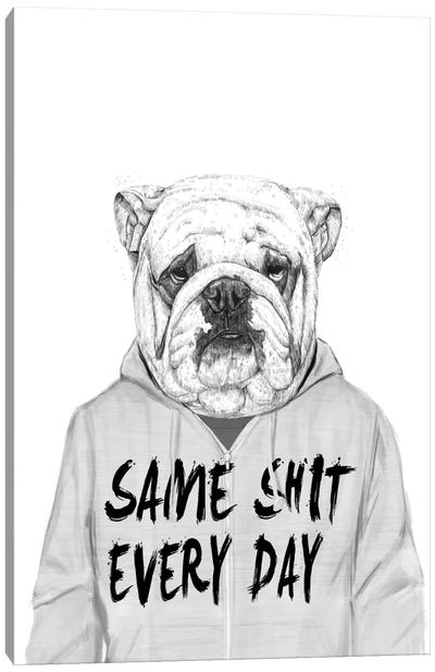 Same Shit ... Canvas Art Print
