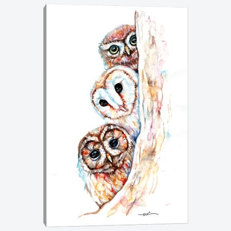 Peeping Owls Canvas Print #BSR103} by BebesArts Canvas Print