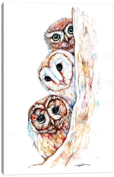 Peeping Owls Canvas Art Print