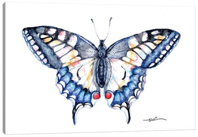 Swallowtail Canvas Art Print