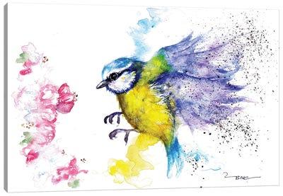 Blue Tit And Blossom Canvas Art Print
