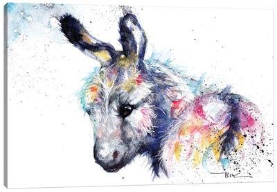 Donkey Canvas Art Print