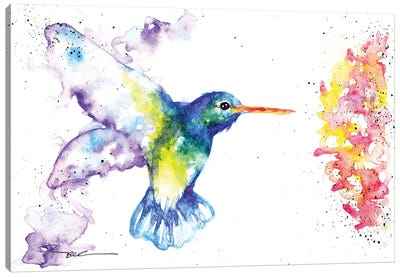 Hummingbird And Blossom II Canvas Art Print
