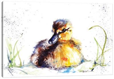 Little Duckling Canvas Art Print