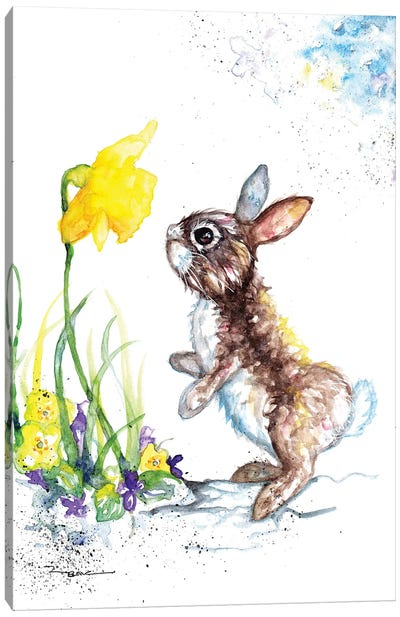 Rabbit And Daffodil Canvas Art Print