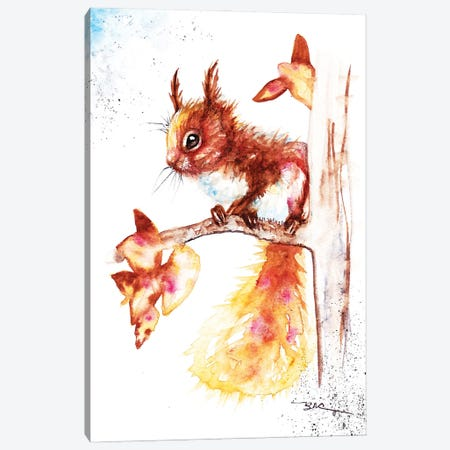 Red Squirrel I Canvas Print #BSR68} by BebesArts Canvas Wall Art