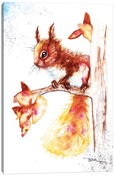 Red Squirrel I Canvas Art Print