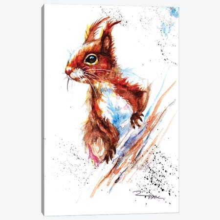 Red Squirrel II Canvas Print #BSR69} by BebesArts Canvas Wall Art