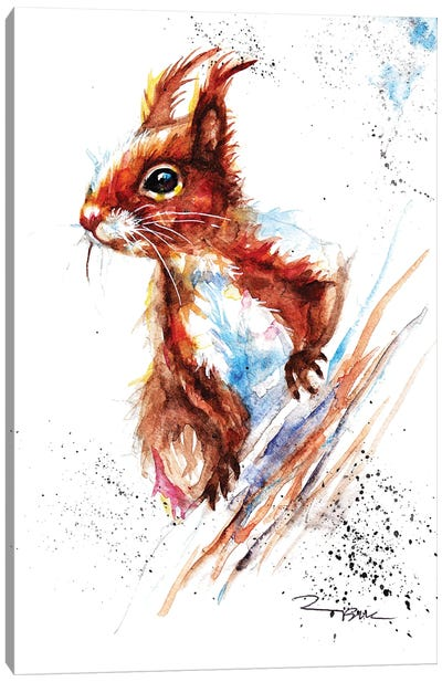 Red Squirrel II Canvas Art Print