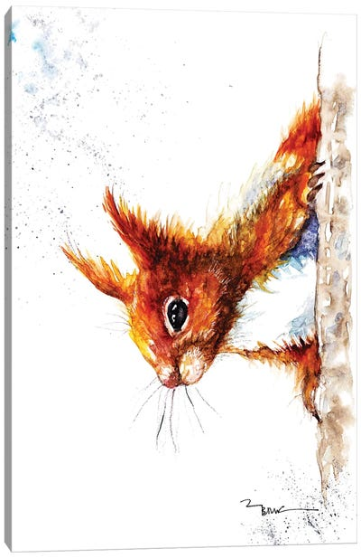 Red Squirrel III Canvas Art Print