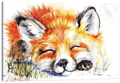 Sleeping Fox Canvas Art Print
