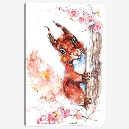 Squirrel And Blossom Canvas Print #BSR77} by BebesArts Canvas Art