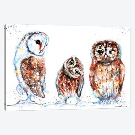 Trio Of Owls Canvas Print #BSR86} by BebesArts Canvas Print