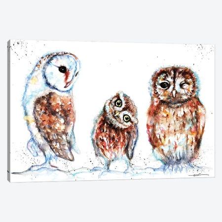 Trio Of Owls Canvas Print #BSR86} by BebesArts Canvas Print