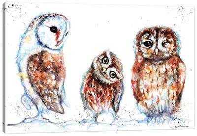Trio Of Owls Canvas Art Print