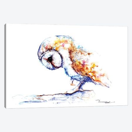 White Velvet Canvas Print #BSR89} by BebesArts Canvas Artwork
