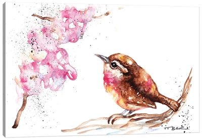 Wren And Blossom Canvas Art Print