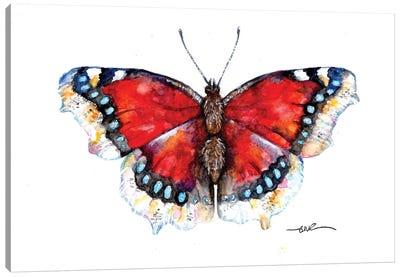 Camberwell Beauty Canvas Art Print