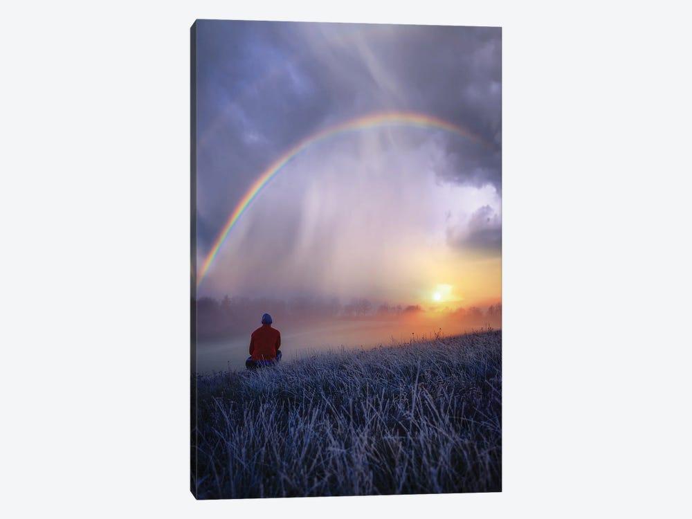Frozen Rainbows by Brent Shavnore 1-piece Canvas Artwork