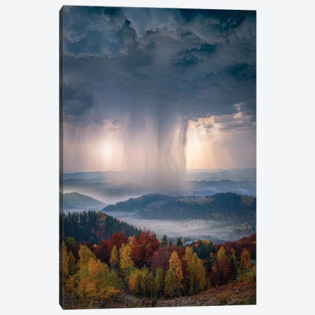 Autumn Downpour Canvas Print #BSV28} by Brent Shavnore Canvas Wall Art