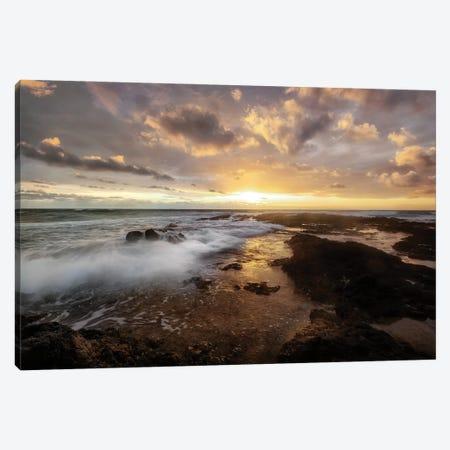 Golden Surf Canvas Print #BTD4} by D. Burt Art Print