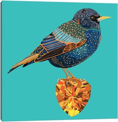 Starling Bird On Citrine Canvas Art Print