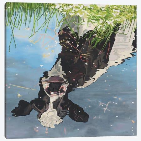 Cow Reflection Canvas Print #BTN10} by Clara Bastian Canvas Wall Art