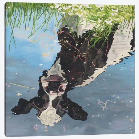 Cow Reflection Canvas Print #BTN10} by Clara Bastian Canvas Wall Art