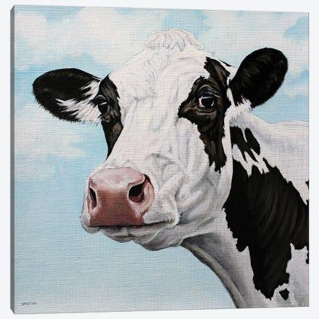 Dairy Cow Canvas Print #BTN11} by Clara Bastian Canvas Artwork