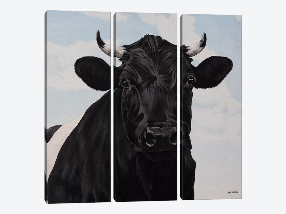 Dutch Belted Cow 3-piece Canvas Wall Art
