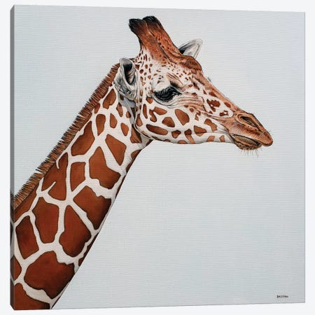 Giraffe Canvas Print #BTN18} by Clara Bastian Canvas Art