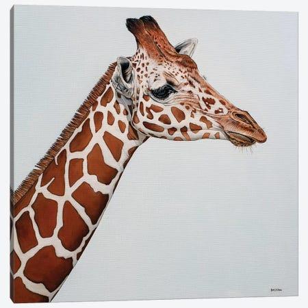 Giraffe Canvas Print #BTN18} by Clara Bastian Canvas Art