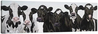Herd Of Cows Canvas Art Print