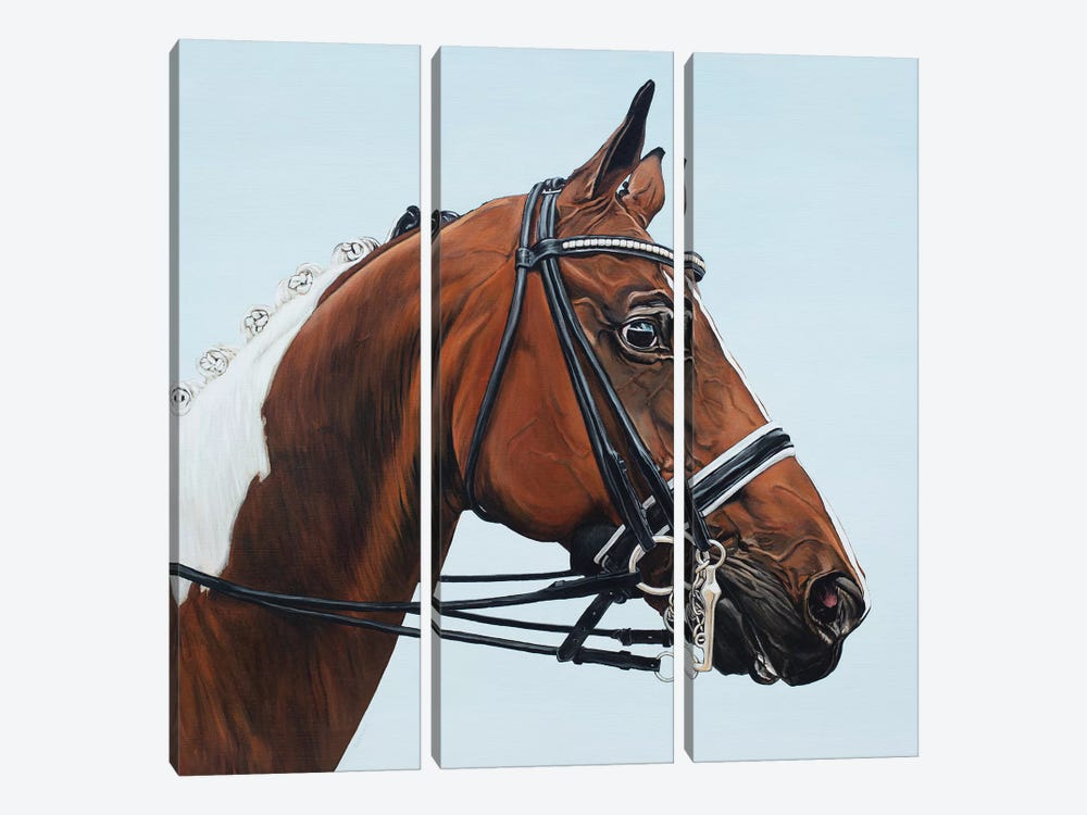 Horse Tabiano by Clara Bastian 3-piece Canvas Art Print