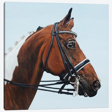 Horse Tabiano 3-Piece Canvas #BTN20} by Clara Bastian Canvas Art Print