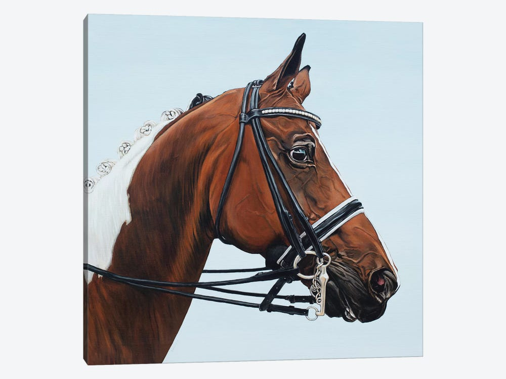 Horse Tabiano by Clara Bastian 1-piece Art Print