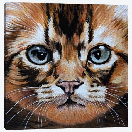 Missy Canvas Print #BTN25} by Clara Bastian Canvas Art