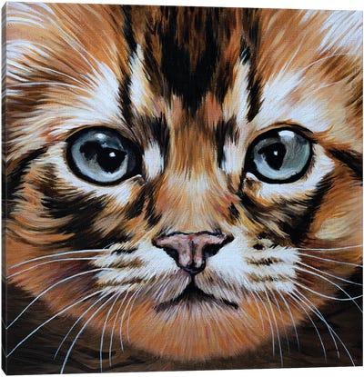 Missy Canvas Art Print