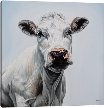 Blanche Canvas Art Print