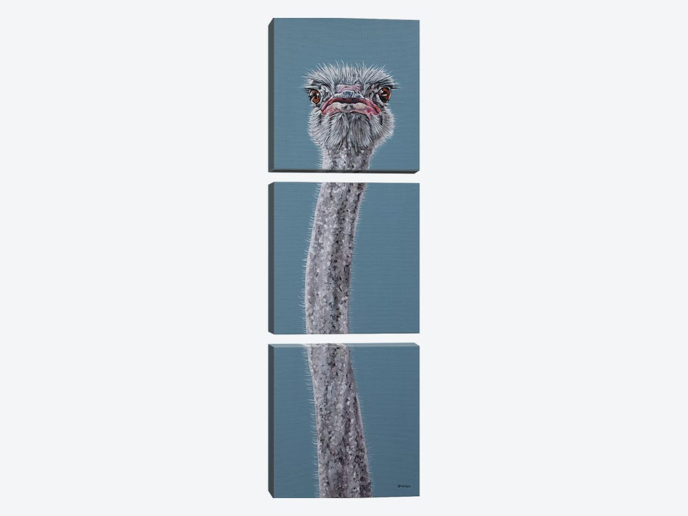Ostrich by Clara Bastian 3-piece Canvas Artwork
