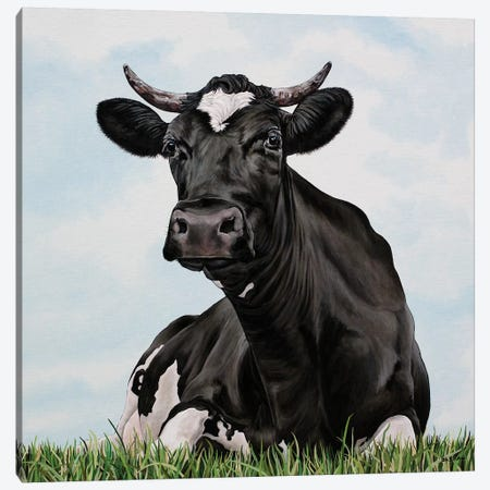 Pasture Cow Canvas Print #BTN31} by Clara Bastian Canvas Artwork