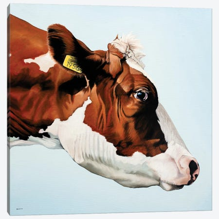 Profile Cow Canvas Print #BTN34} by Clara Bastian Canvas Art Print
