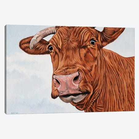 Red Cow Canvas Print #BTN35} by Clara Bastian Canvas Art Print