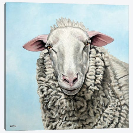 Sheep Canvas Print #BTN38} by Clara Bastian Canvas Art