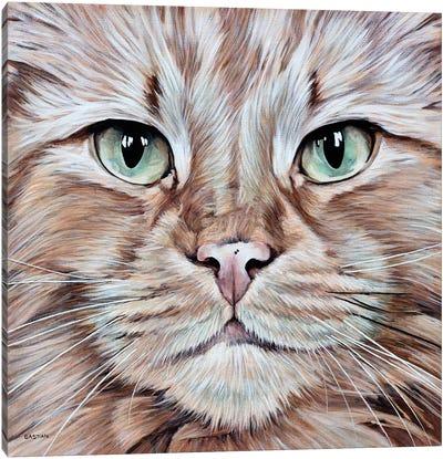 Tommy Canvas Art Print