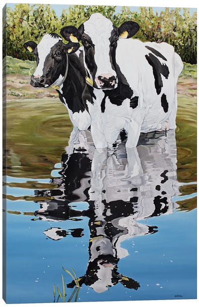 Two Cows In A Creek Canvas Art Print