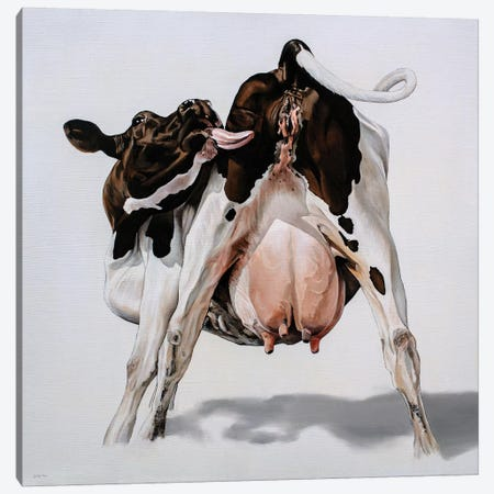 Candy Cow 3-Piece Canvas #BTN5} by Clara Bastian Canvas Print